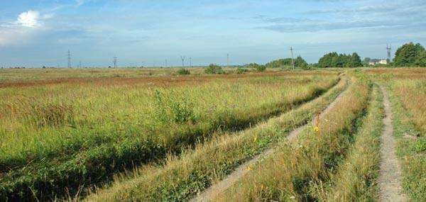 Дорога в Смолево от станции