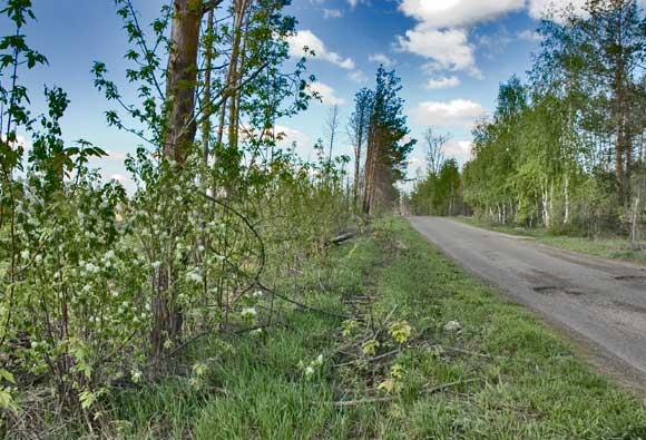 Дорога к Голубому озеру