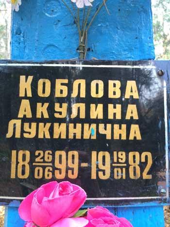 koblovi_5.jpg