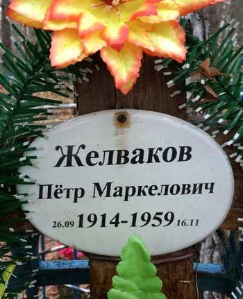 zelvakovi_3.jpg