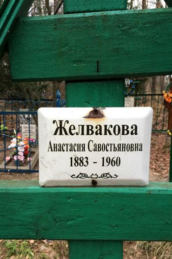 zelvakovi_8.jpg