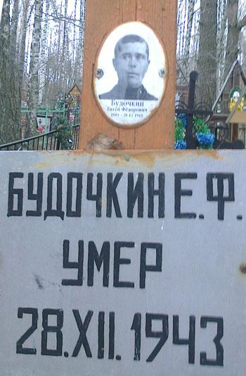 yakovlevskoe_dr_1.jpg