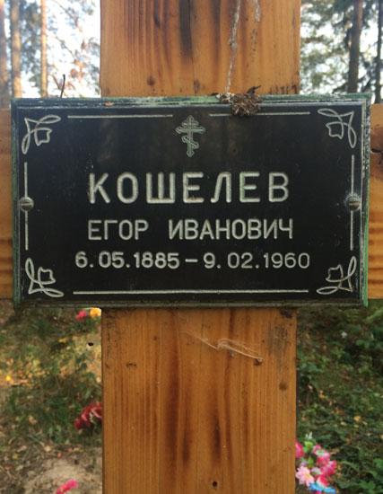 davidovo_koschelevi_2.jpg
