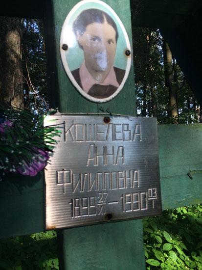 davidovo_koschelevi_6.jpg