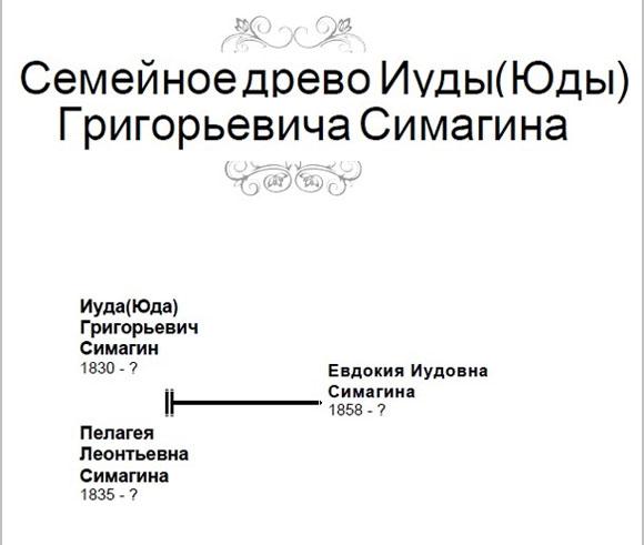 simagini_schema_1.jpg